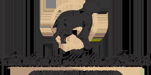 Atendimento médico animal